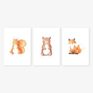 Animaux forêt – écureuil, ours, renard – Aquarelles