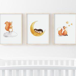 Etoiles – Écureuil, hérisson, renard – Trio Illustrations