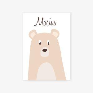Elias, le petit ours